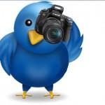Twitter Bird with Camera