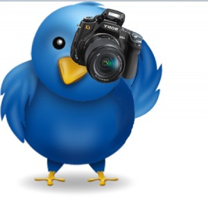 Twitter Bird with Camera